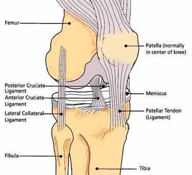 什么是膝盖过度伸展?