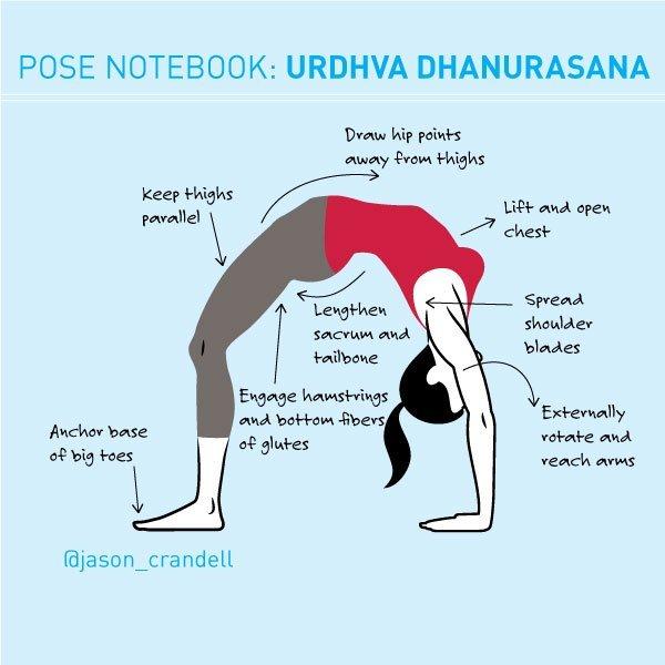 后弯之母:轮式(Urdhva Dhanurasana)